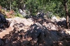 ancora i sassi della collina