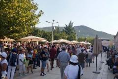pellegrinaggio medjugorje festival giovani (2)