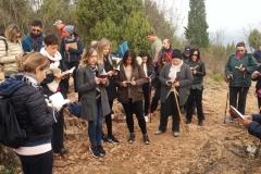 pellegrinaggio medjugorje aereo roma (26)