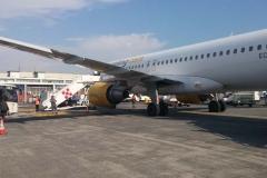 pellegrinaggio medjugorje aereo (50)