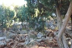 le colline di Medjugorje e non solo (74)