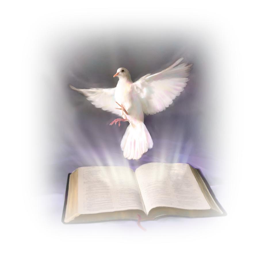 Commento al Vangelo di domenica 15 ottobre