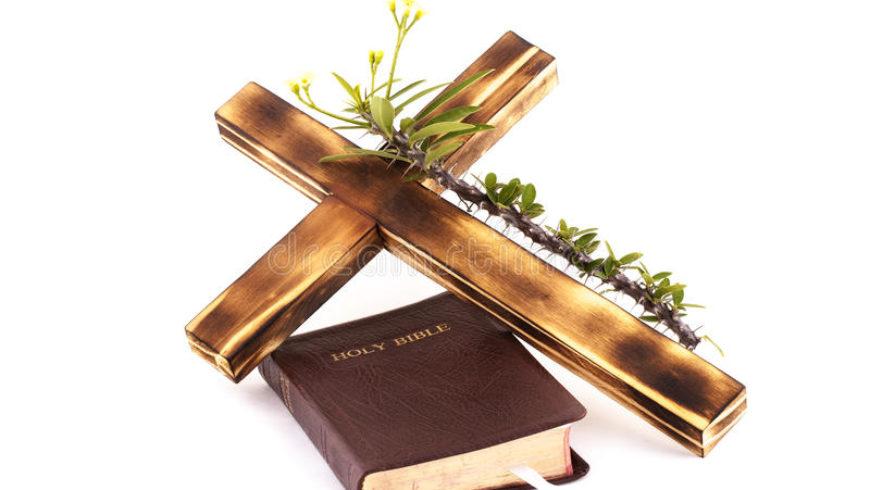 Vangelo di domenica 12 novembre