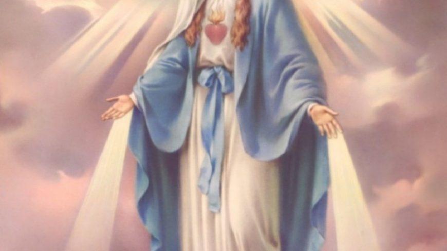 Vangelo dell'otto dicembre Immacolata Concezione
