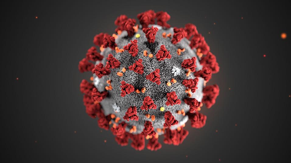 Lettera al #coronavirus all'umanità….!!!